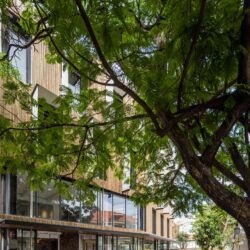 dreamplex-coworking-office-sustainable-harmonie-t3architects-vietnam-007-scaled
